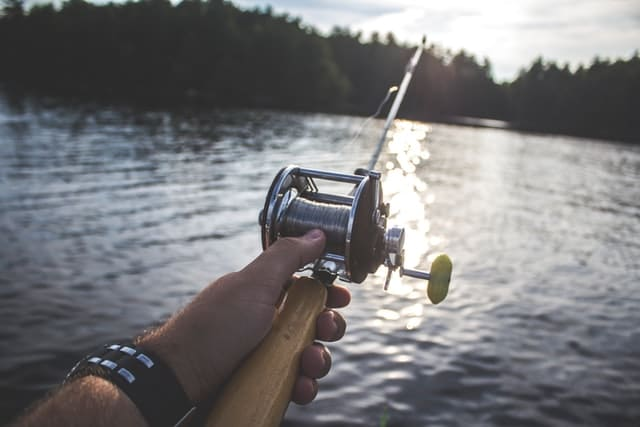 activiteiten rond het water